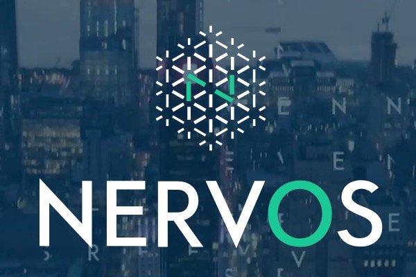 Nervos logo